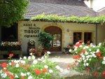 Jura – место для виноделов-хипстеров